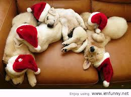 All you need's a long nap, a soft sofa, and some good friends...Merry Christmas!
