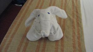 Adorable Elephant