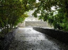 rainireland