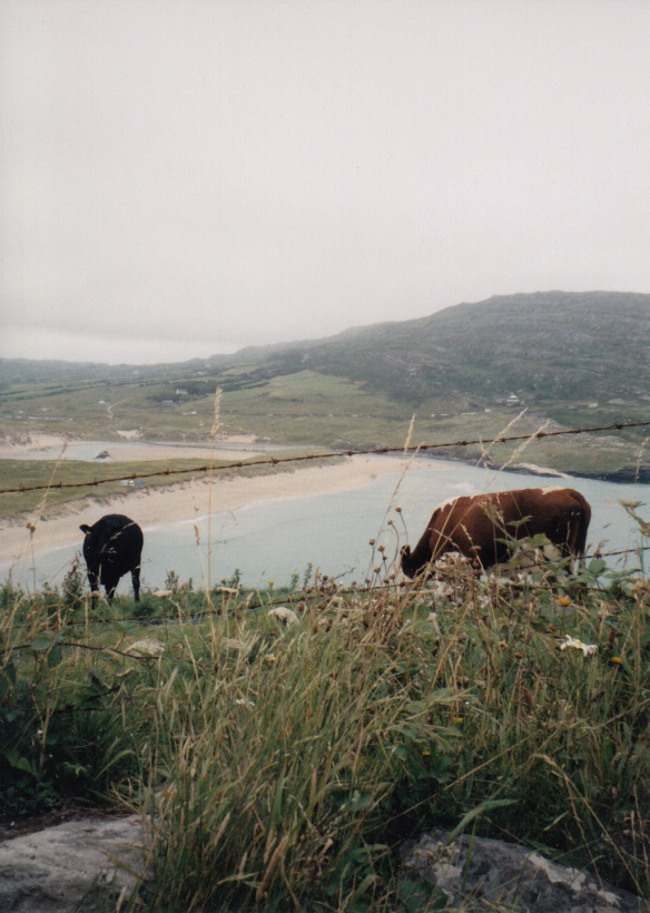 Ireland 2_0034